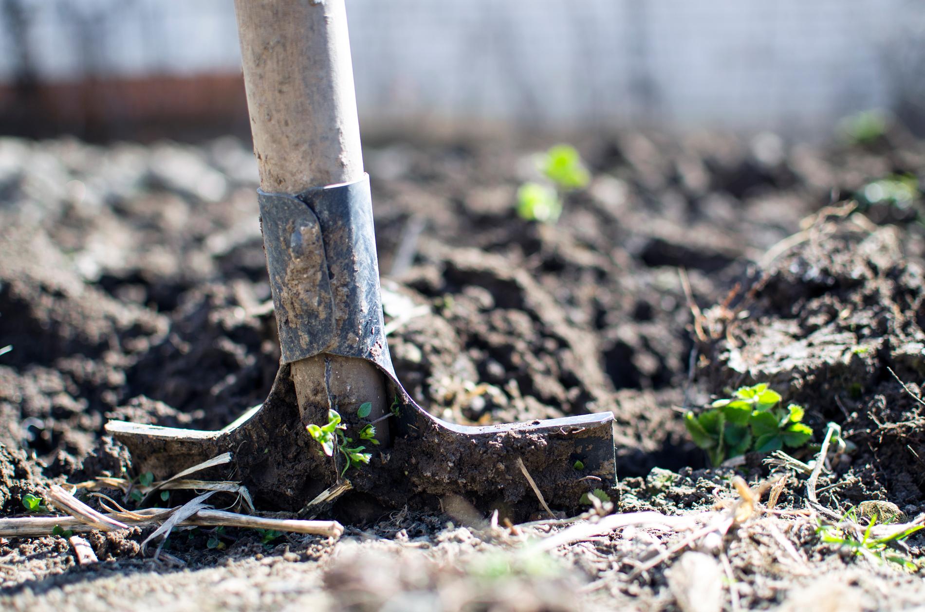 Blog Agricultura